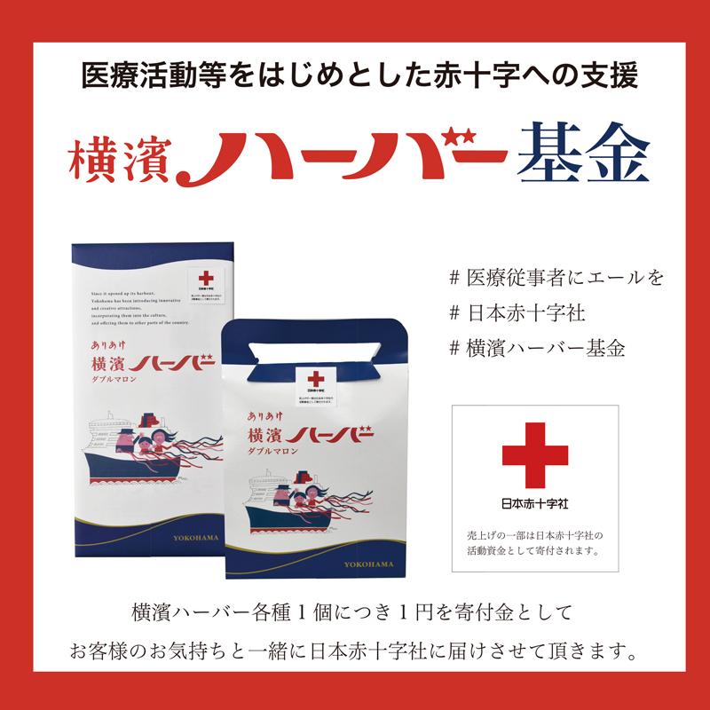 2021年4月7日「横濱ハーバー基金」でお寄せいただいた4,440,079円を日本赤十字社神奈川県支部へお贈りいたしました。